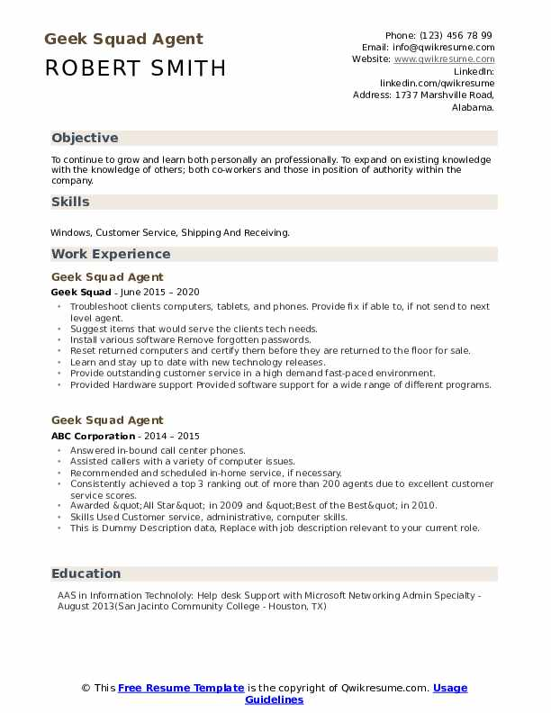Geek Squad Agent Resume example