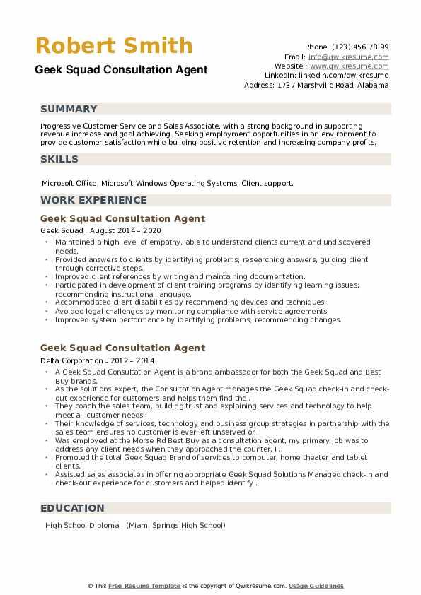 Geek Squad Consultation Agent Resume example