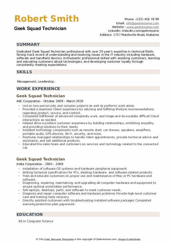 Geek Squad Technician Resume example
