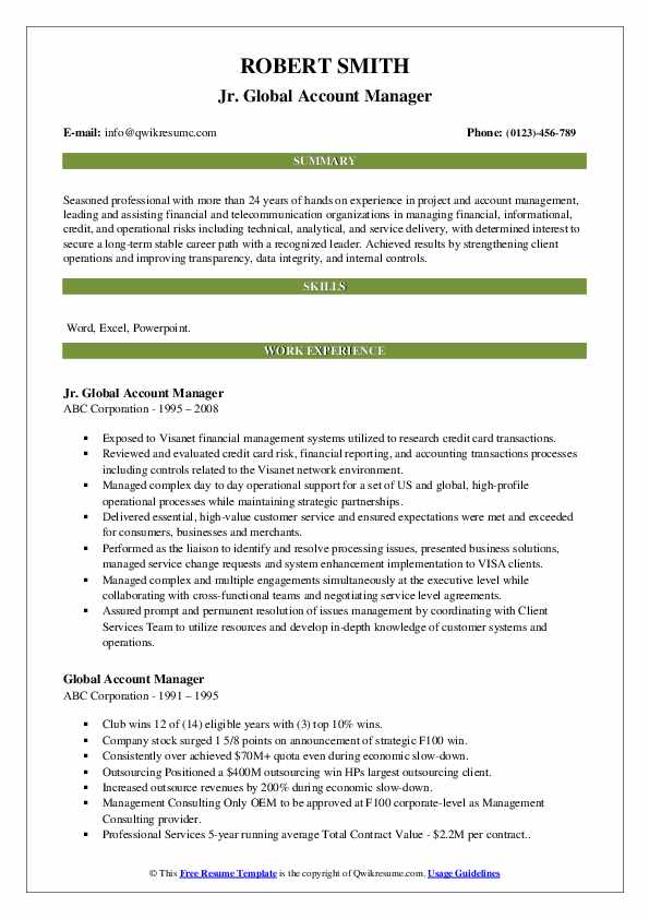 Jr. Global Account Manager Resume Example