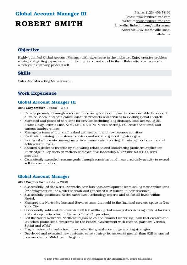 Global Account Manager III Resume Model