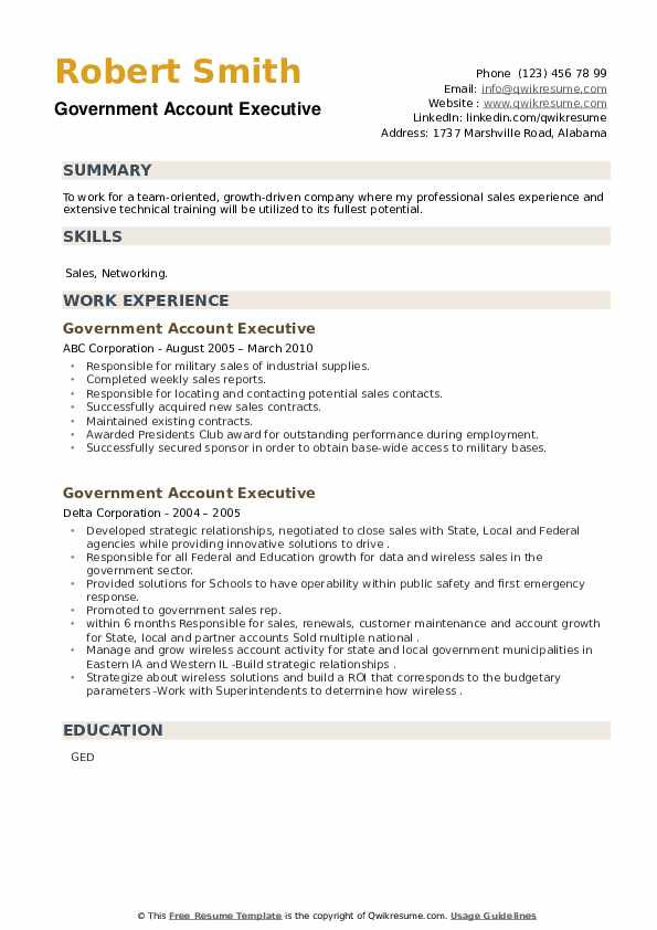 Government Account Executive Resume example