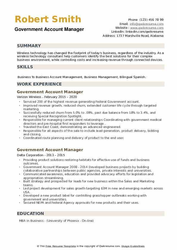Government Account Manager Resume example