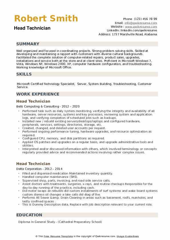 Head Technician Resume example