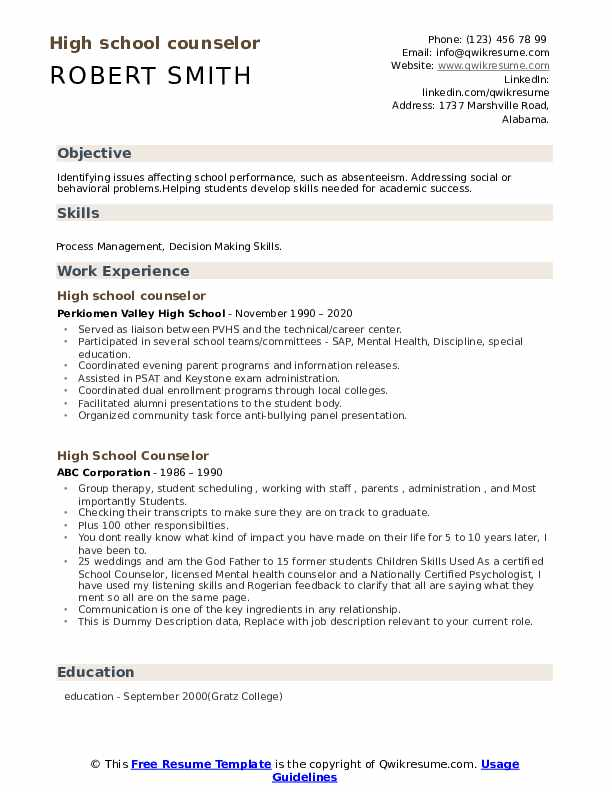 High School Counselor Resume example