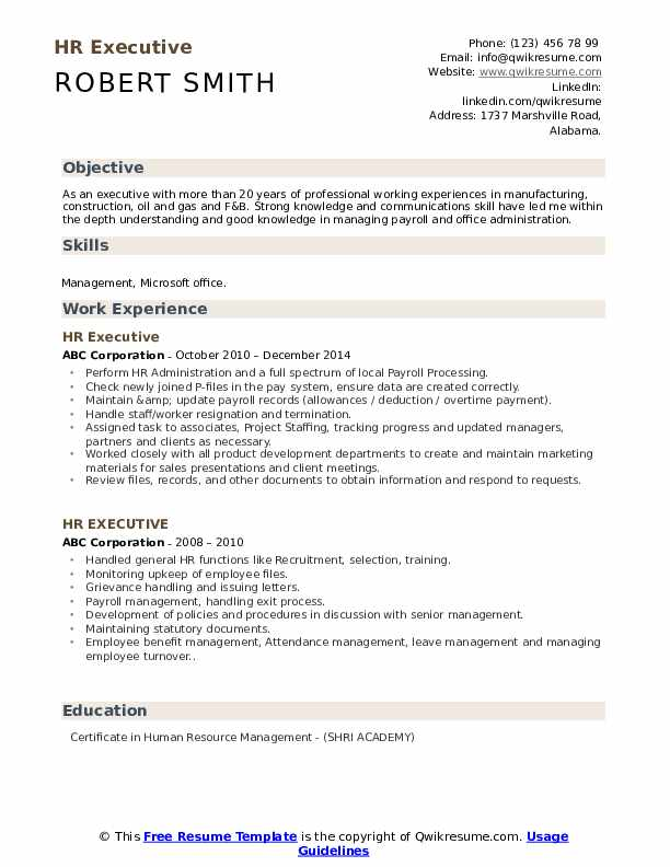 HR Executive Resume Model