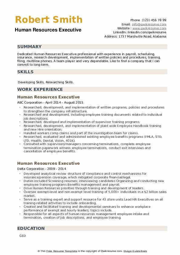 Human Resources Executive Resume example