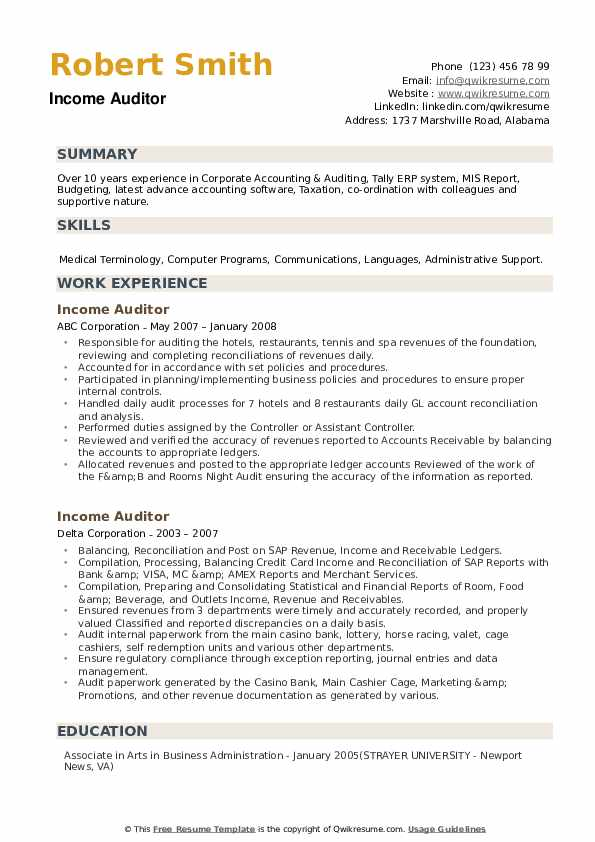 Income Auditor Resume example