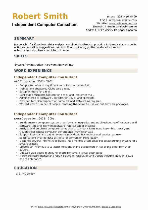 Independent Computer Consultant Resume example