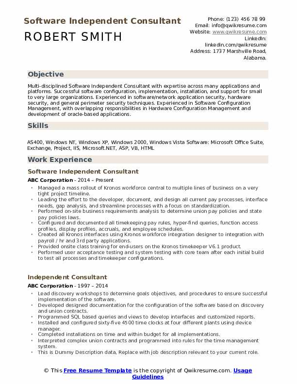 Software Independent Consultant Resume Model