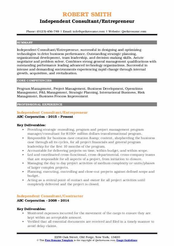 Independent Consultant/Entrepreneur Resume Example