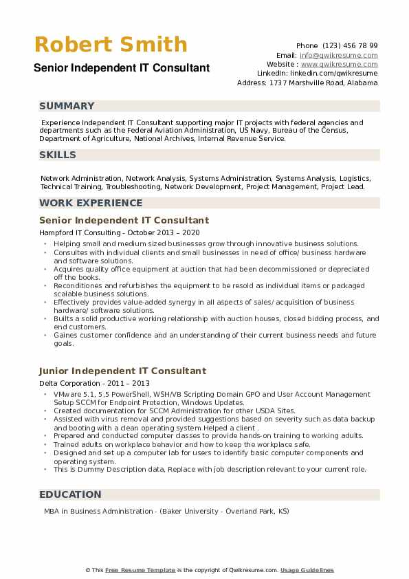 Independent IT Consultant Resume example