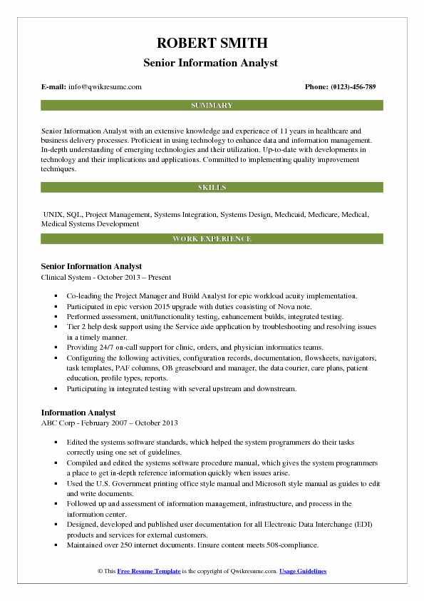 Senior Information Analyst  Resume Model