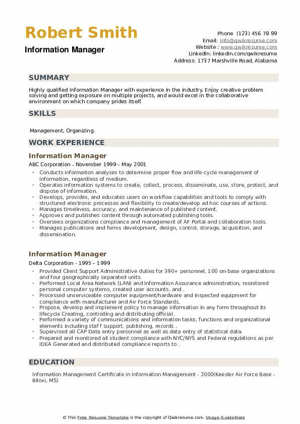 Information Manager Resume example