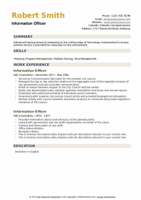 Information Officer Resume example