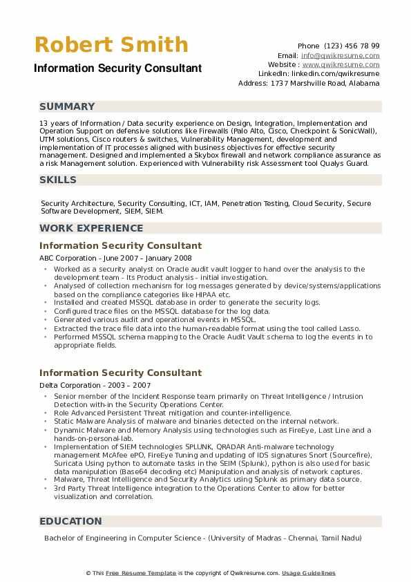 Information Security Consultant Resume example
