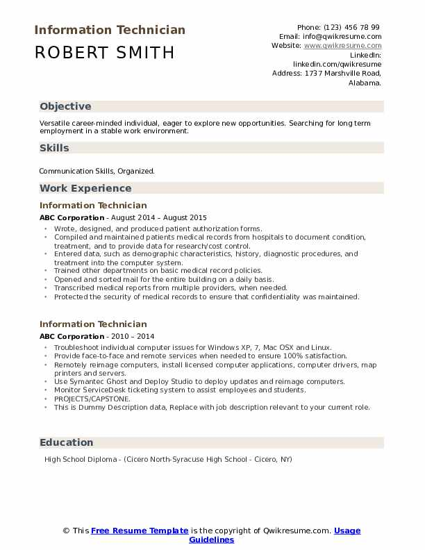 Information Technician Resume example