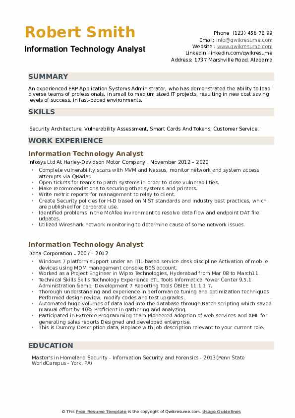 Information Technology Analyst Resume example