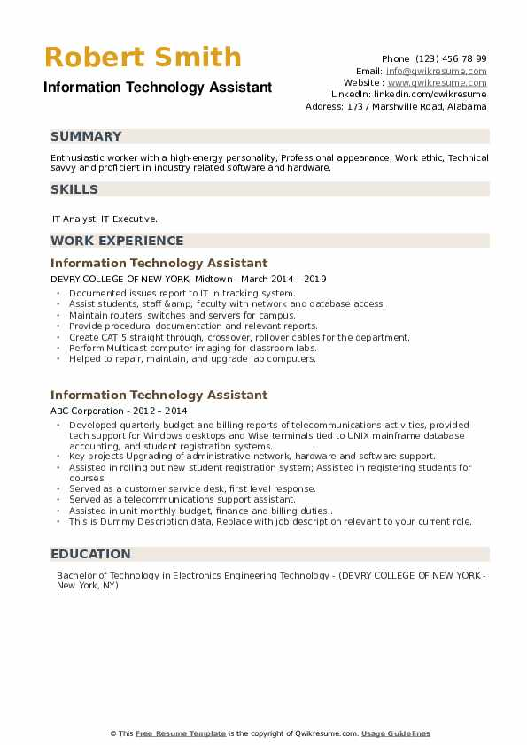 Information Technology Assistant Resume example
