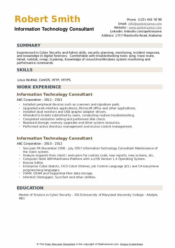 Information Technology Consultant Resume example