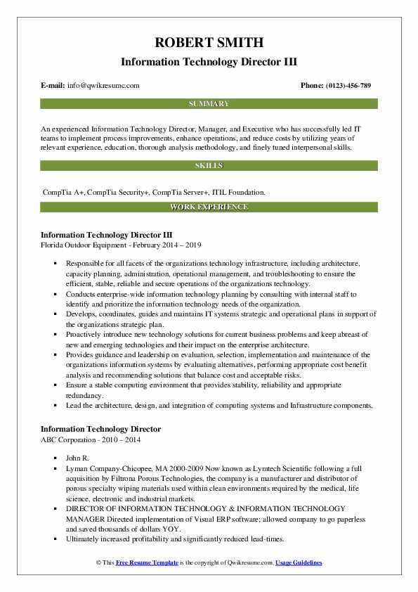 Information Technology Director III Resume Model