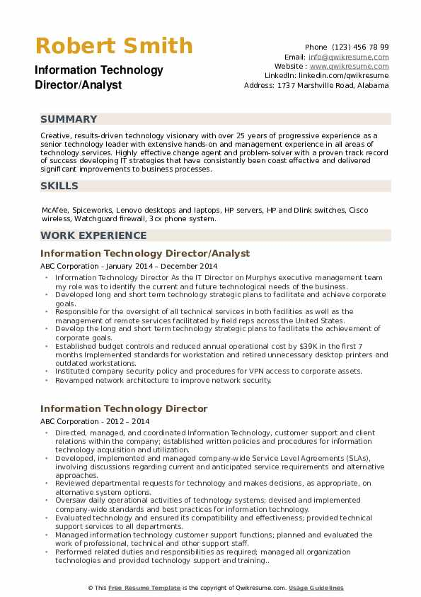 Information Technology Director/Analyst Resume Example