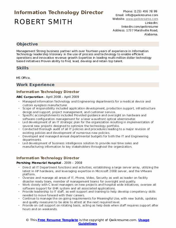 Information Technology Director Resume example