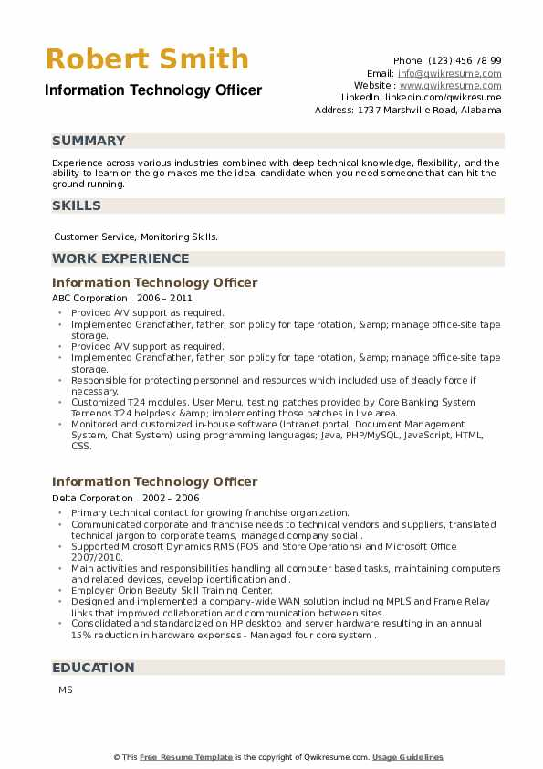 Information Technology Officer Resume example