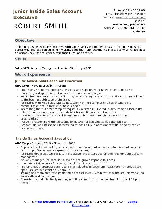 Junior Inside Sales Account Executive Resume Template