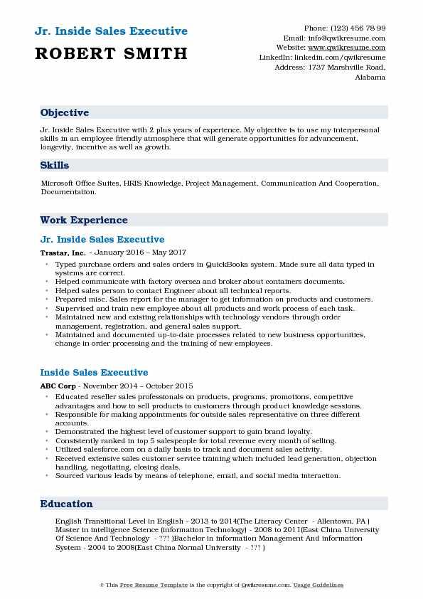 Jr. Inside Sales Executive Resume Model