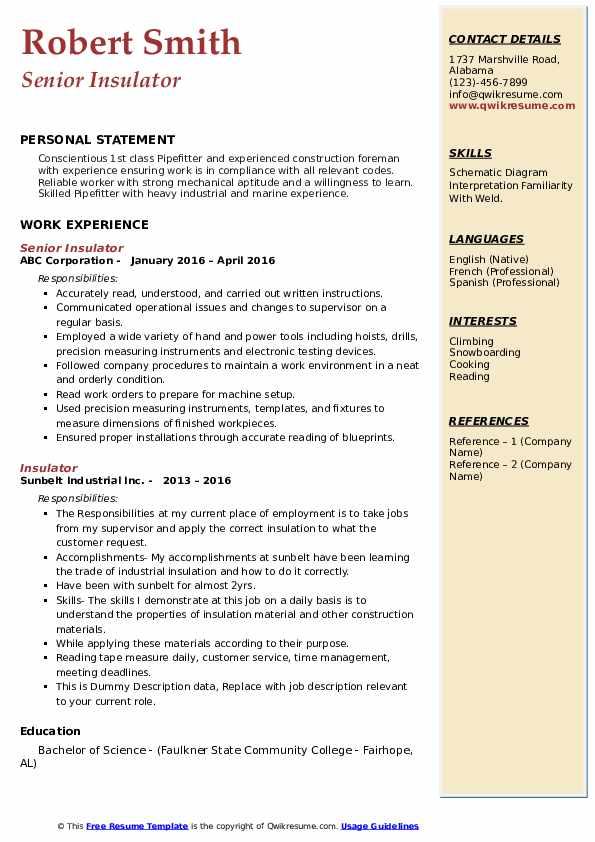 Senior Insulator Resume Format