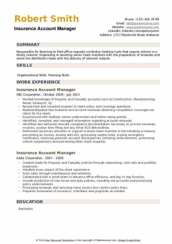 Insurance Account Manager Resume example
