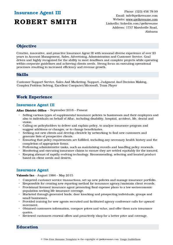 Insurance Agent III Resume Template
