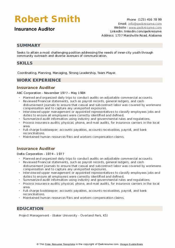 Insurance Auditor Resume example