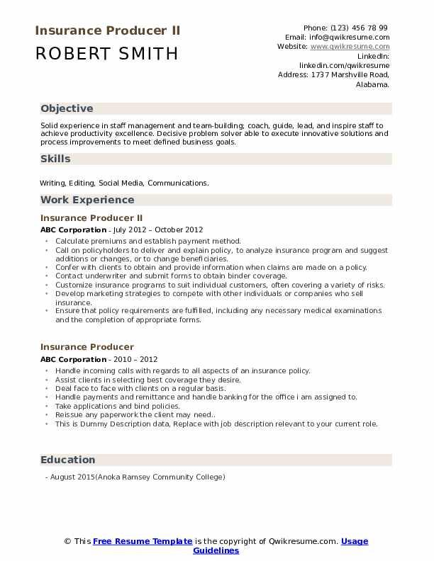 Insurance Producer II Resume Example