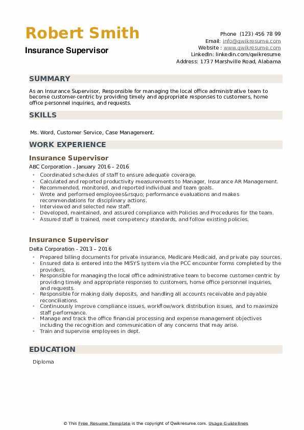 Insurance Supervisor Resume example