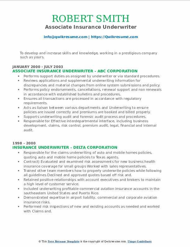 Insurance Underwriter Resume example