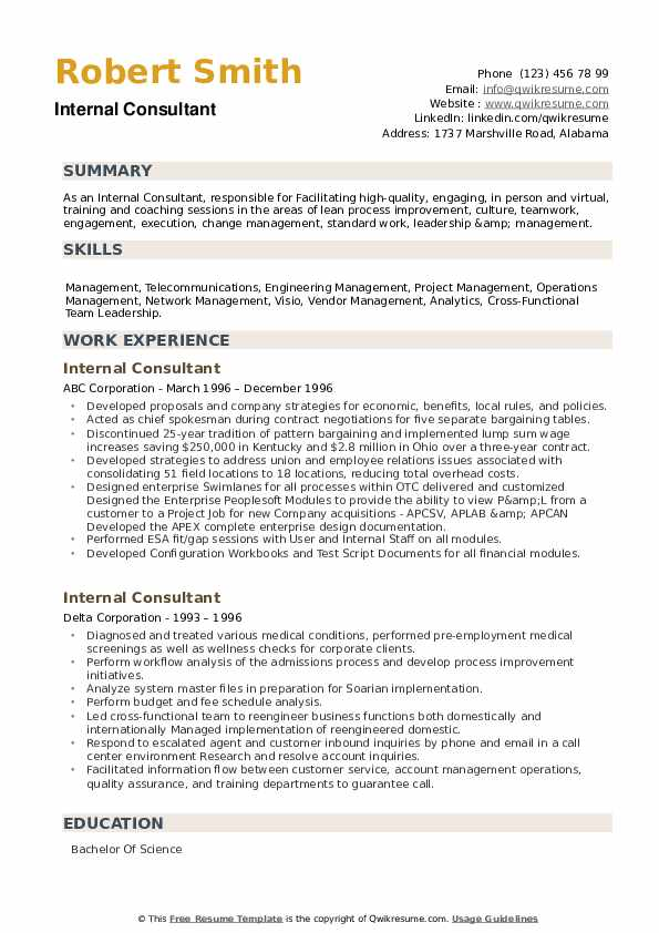 Internal Consultant Resume example