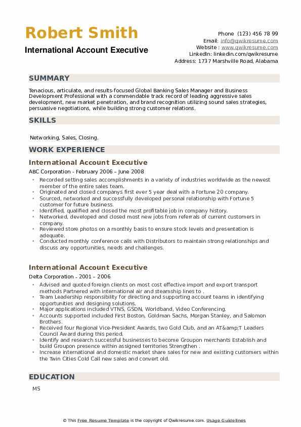 International Account Executive Resume example