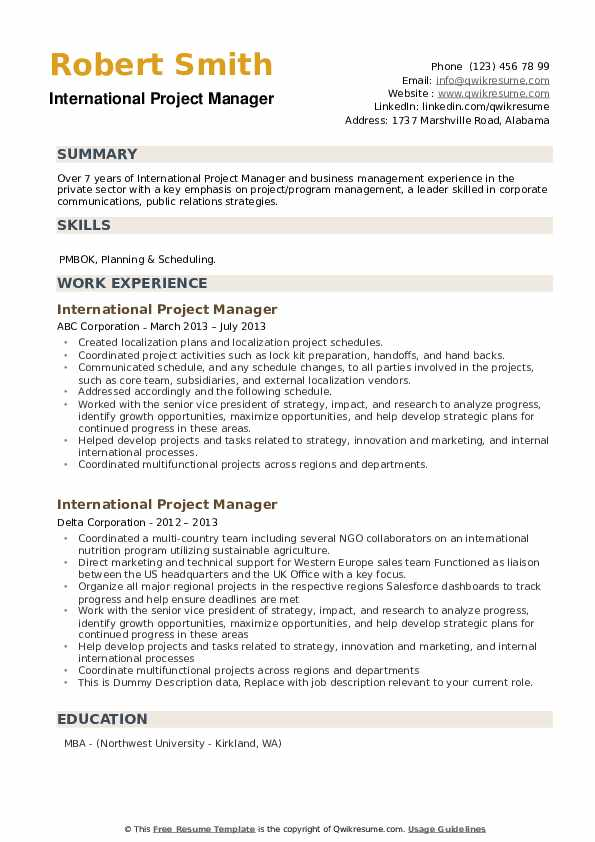 International Project Manager Resume example