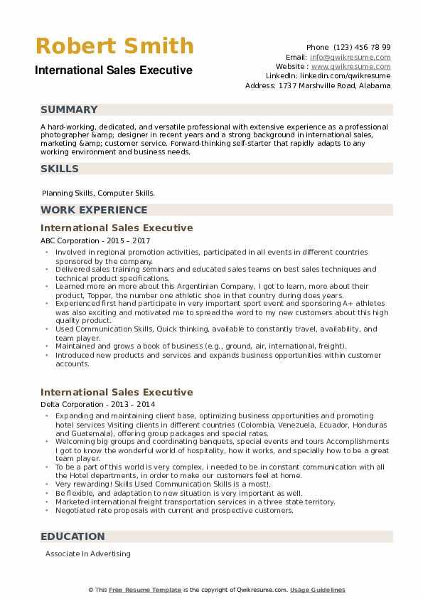 International Sales Executive Resume example