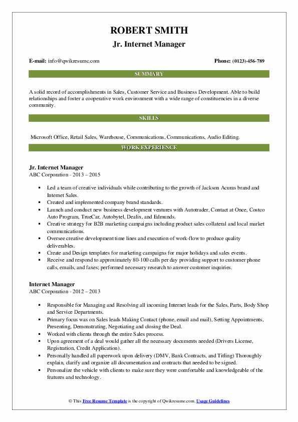 Jr. Internet Manager Resume Template