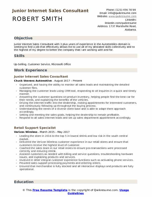 Junior Internet Sales Consultant Resume Example