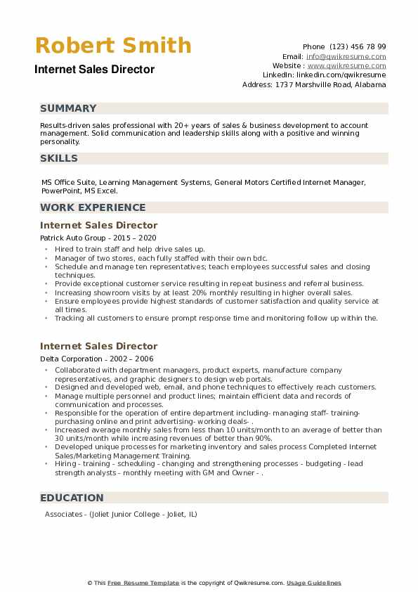 Internet Sales Director Resume example