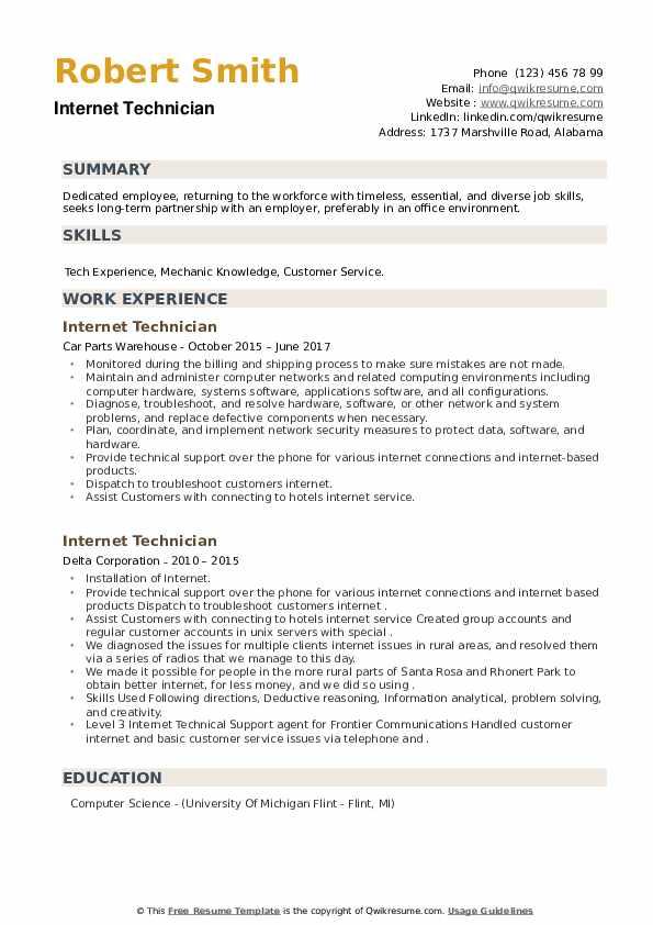 Internet Technician Resume example