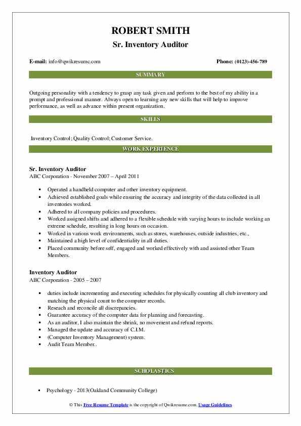Sr. Inventory Auditor Resume Format