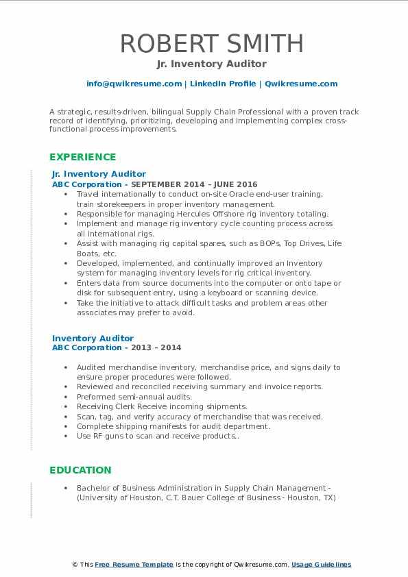 Jr. Inventory Auditor Resume Model