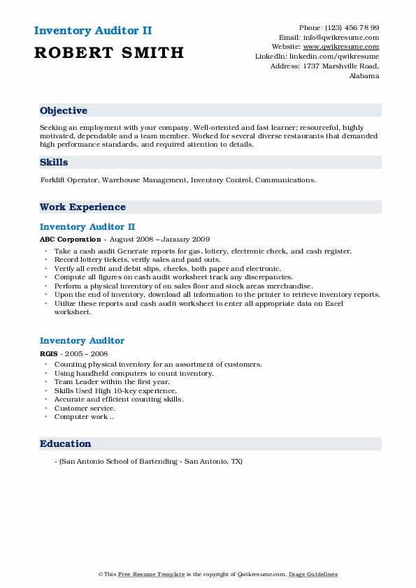 Inventory Auditor II Resume Sample