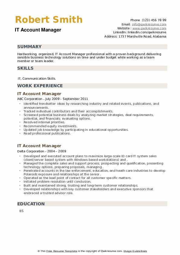 IT Account Manager Resume example