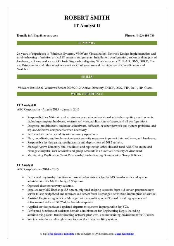 IT Analyst II Resume Format